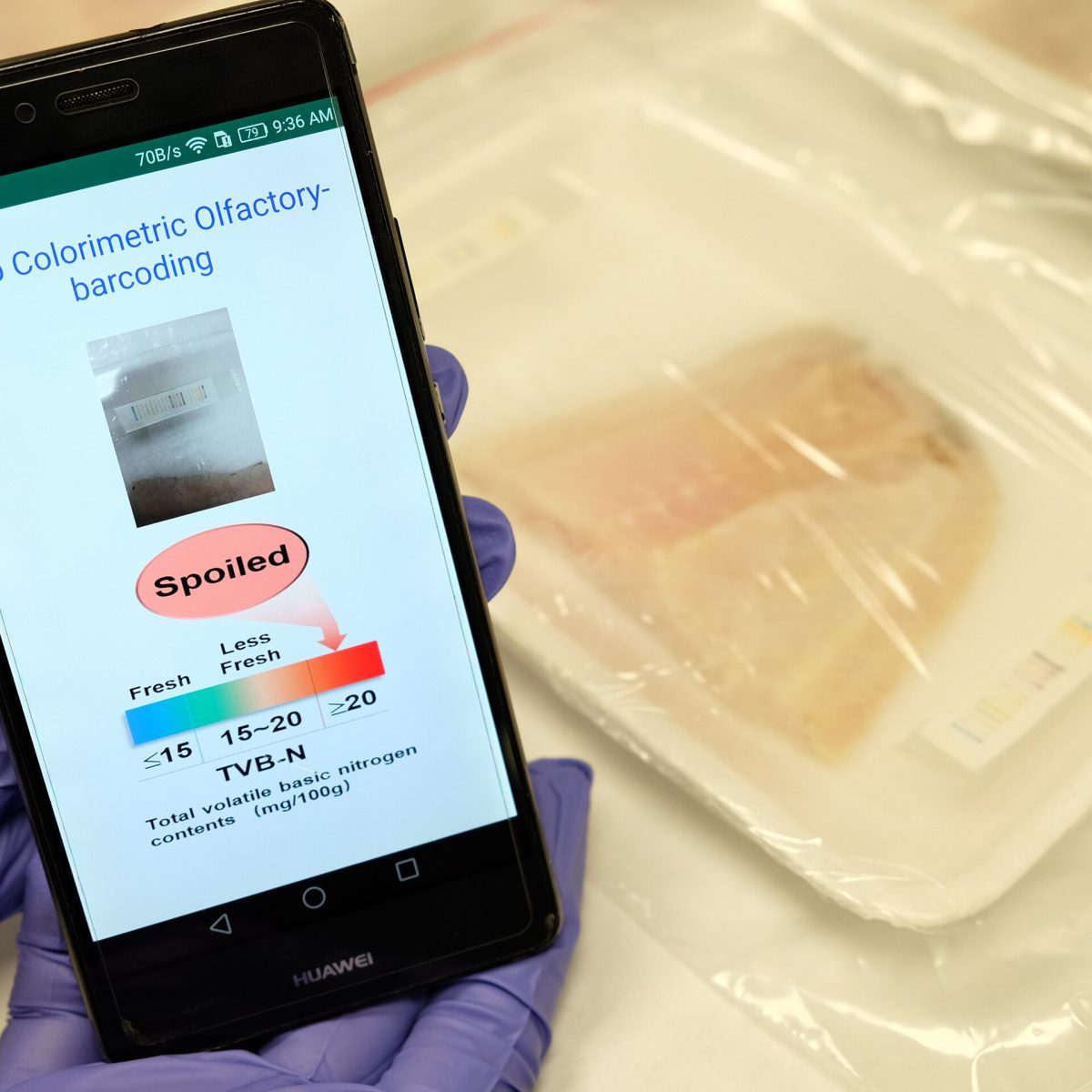AI powered Artificial Nose to sniff meat in order to predict fitness for consumption