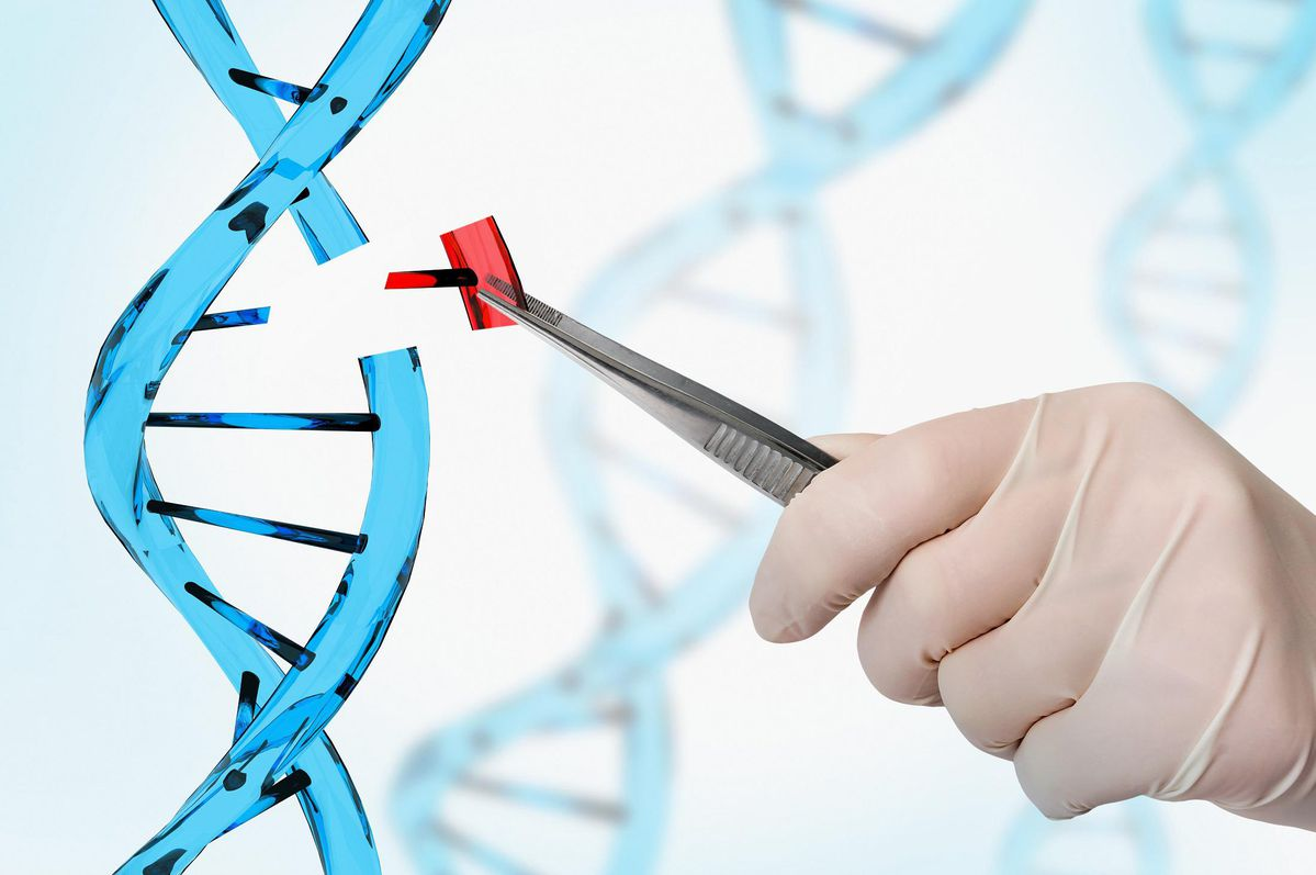 5 Things Everyone Needs To Know About Gene Editing